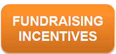 fundraising incentives button word